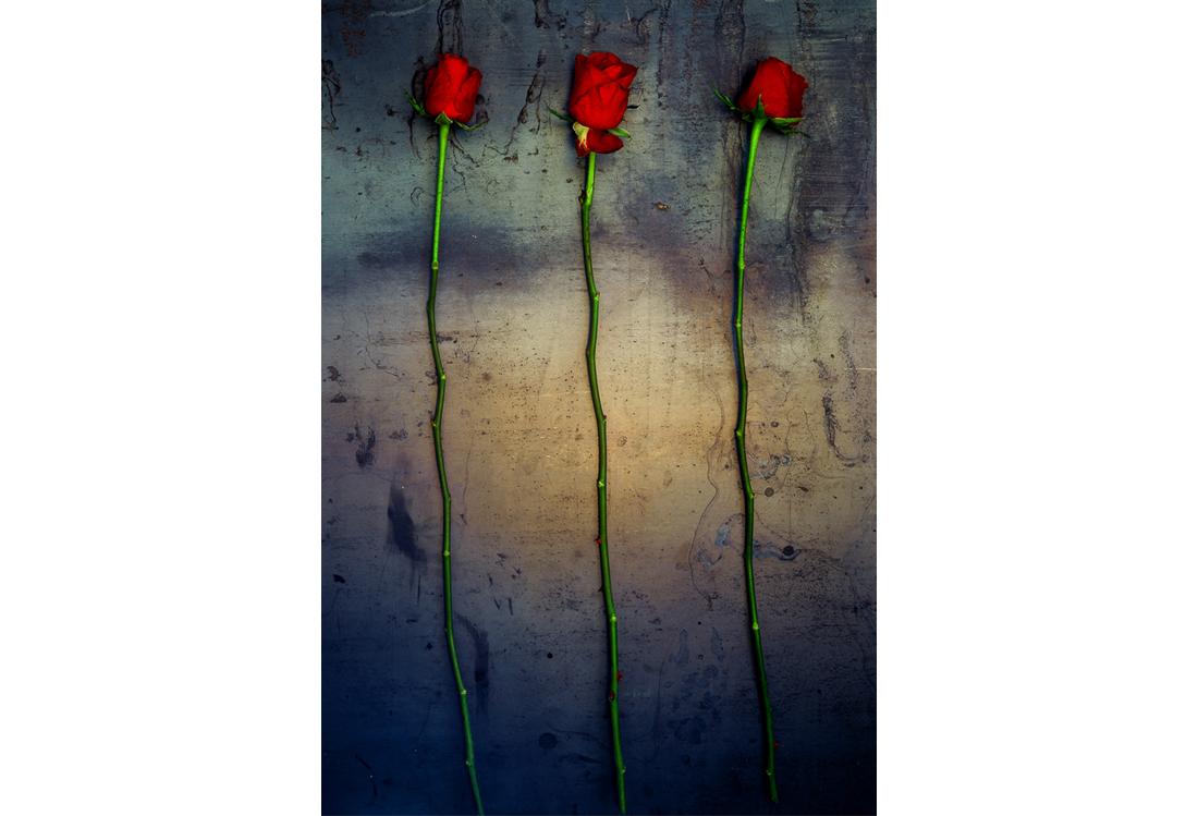 Laura Pietra - fotografo di Still Life tema Red