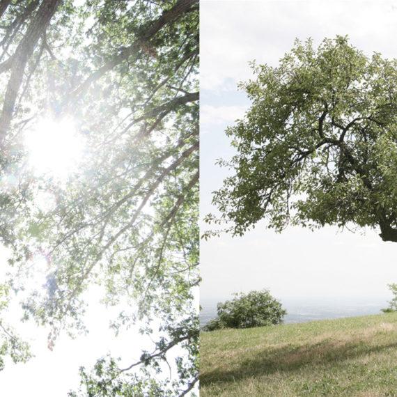 Laura Pietra - foto personal, fotografare l'energia